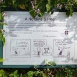 kirstenbosch-botanic-garden (3)