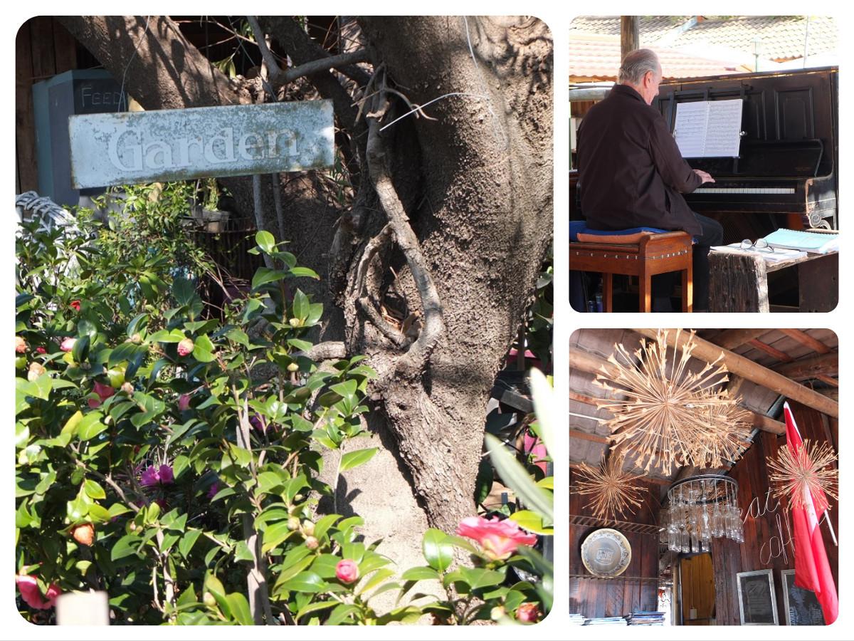 Bryanston Market Pianist
