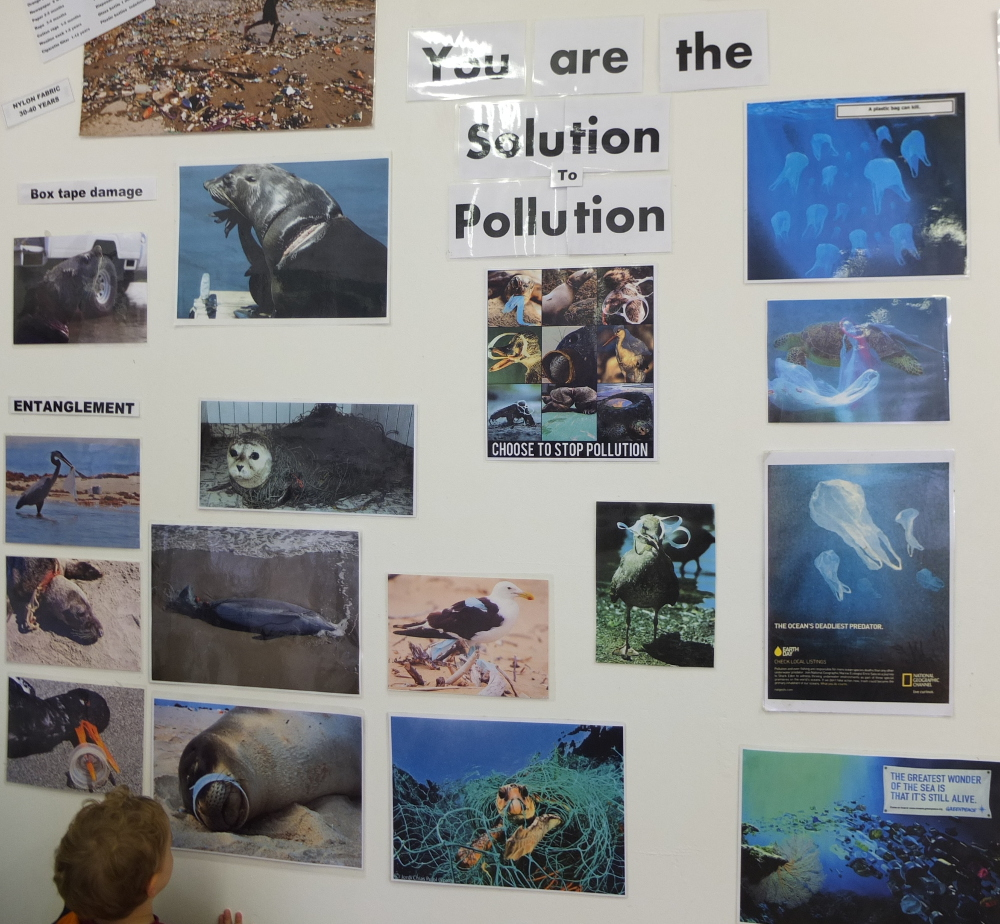 Sensibilisation à la population plastique
