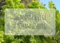 Restaurants végétariens à Johannesburg