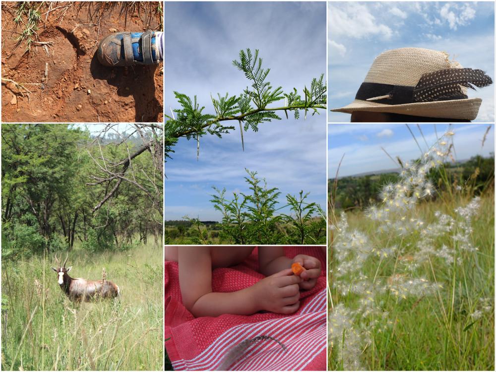 Somabula Nature Reserve - Randonnée à 1h de Johannesburg
