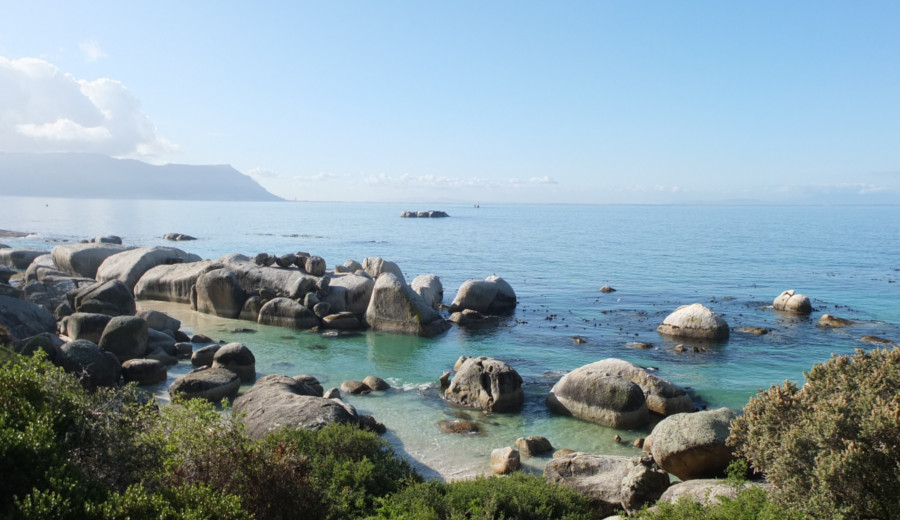 Boulders Beach in Simons Town, South Africa