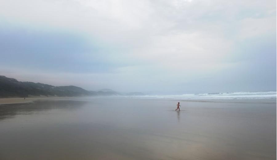 Courir librement sur la plage. Wild Coast, Afrique du Sud.