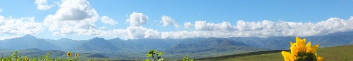 BIlan écologique expatration Afrique du Sud