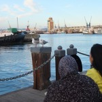 cape-town-waterfront (4)