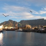 cape-town-waterfront (5)